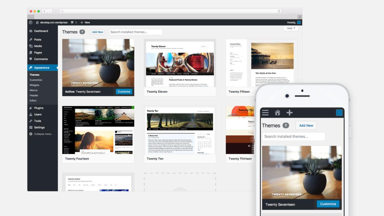 WordPress Theme Auswahl